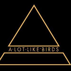 A Lot Like Birds