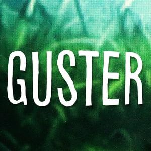 Guster Venue