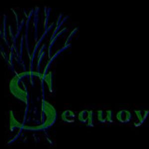 Sequoya Ferropolis