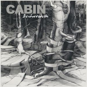 Cabin Zanzabar