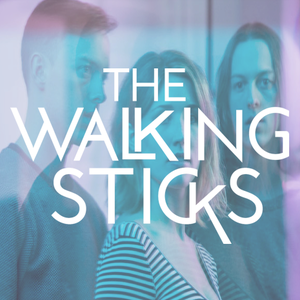 The Walking Sticks Merriweather Post Pavilion
