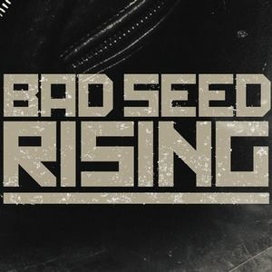 Bad Seed Rising Merriweather Post Pavilion