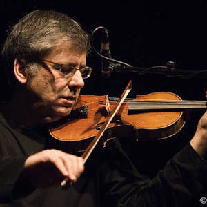 Mark Feldman Limanowa