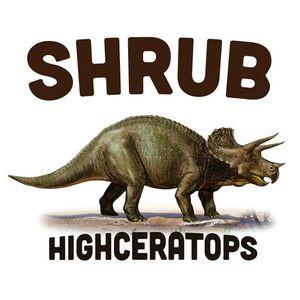 Shrub The Sinclair