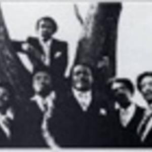 Kings of Harmony Lockhart