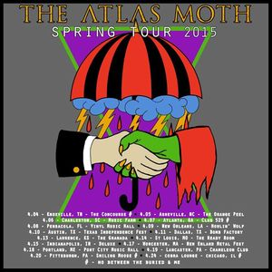 The Atlas Moth Black Sheep