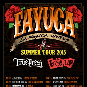 FAYUCA Nectar Lounge