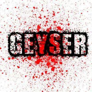 Geyser Hyde Park