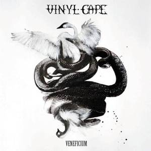 Vinyl Cape SPACE Gallery