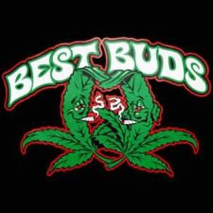 Best Buds The Chris Farley Cabaret