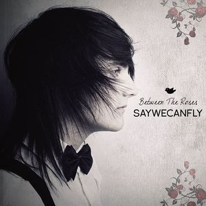 SayWeCanFly Merriweather Post Pavilion