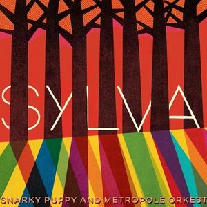 Snarky Puppy The Ritz