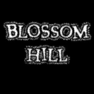 Blossom Hill Dynamo