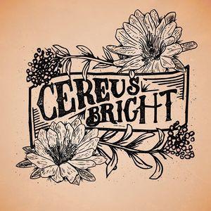 Cereus Bright Wooly's