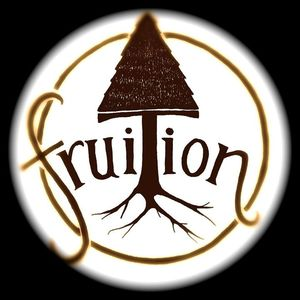 Fruition Mill City Nights