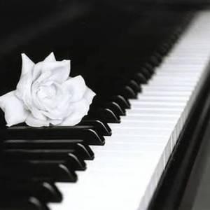Pianomania Michael Fowler Centre