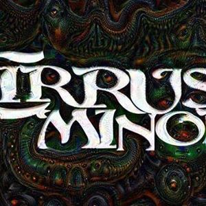 Cirrus Minor Wooly's