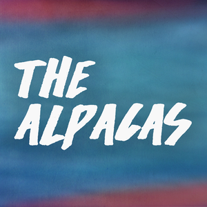 the Alpacas The Horseshoe Tavern
