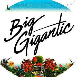 Big Gigantic Belly Up