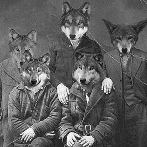The Republic of Wolves Blue Point