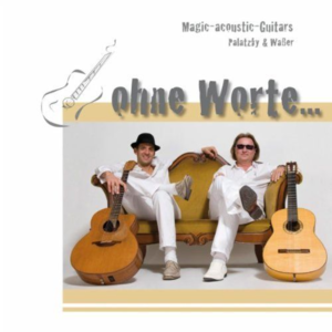 Magic Acoustic Guitars Rutesheim