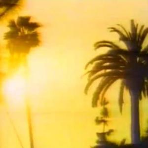 Miami Vice Huddinge