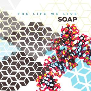 Soap Wooly's