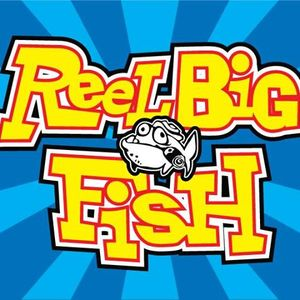Reel Big Fish Merriweather Post Pavilion