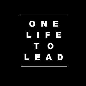 One Life To Lead Metro Gallery