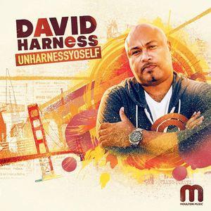 David Harness The Bassment