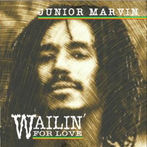 Junior Marvin Brightwaters