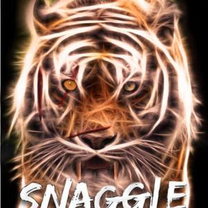 Snaggle The Mansion