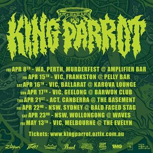 King Parrot Call The Office