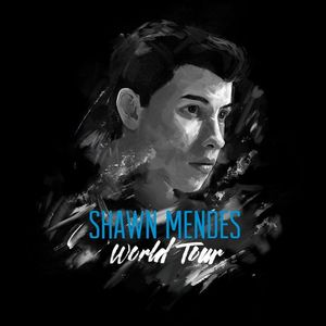 Shawn Mendes Air Canada Centre