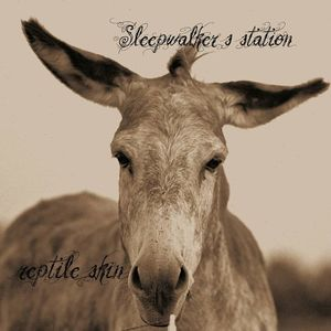 Sleepwalker's Station De Drommedaris