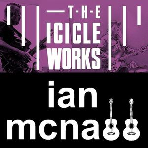 Ian McNabb THE ICICLE WORKS - THE FLOWERPOT
