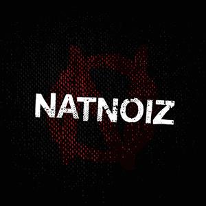 NatNoiz Electric Circus
