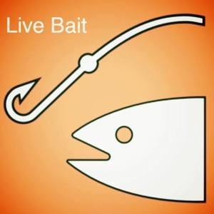 Live Bait Acoustic Duo Sebastian