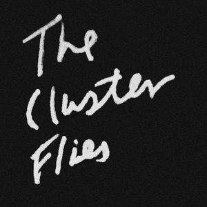 The Cluster Flies Pawtucket