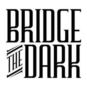 Bridge The Dark Essex University