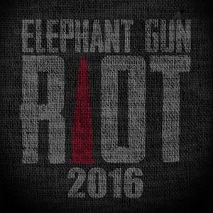 Elephant Gun Riot Knitting Factory Concert House