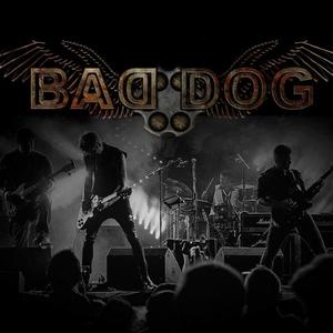Bad Dog The Tivoli Venue