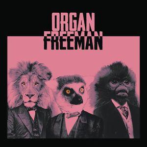 Organ Freeman The Independent (Album Release Show!)