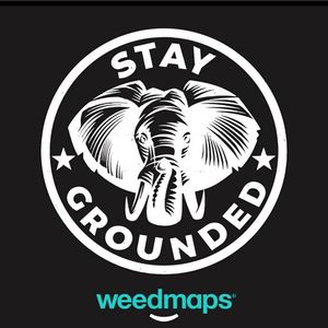 Stay Grounded Nectar Lounge