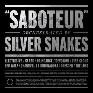 Silver Snakes Peoria Civic Center