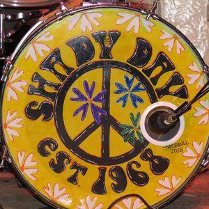 Shady Day Shelton