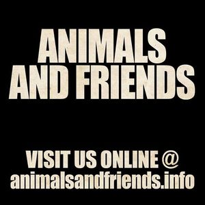Animals and Friends Chollerhalle