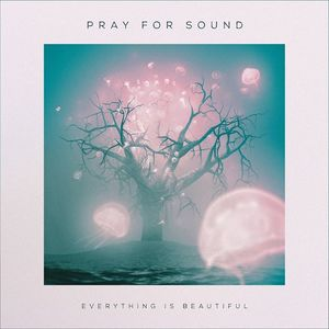 Pray for Sound The Space