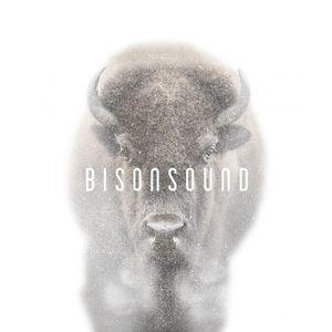 BisonSound The Horseshoe Tavern