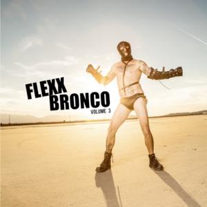 Flexx Bronco Bottom Of The Hill